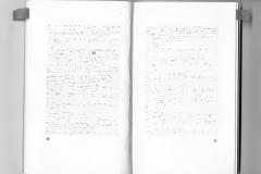 """tentative"" p 30-31"
